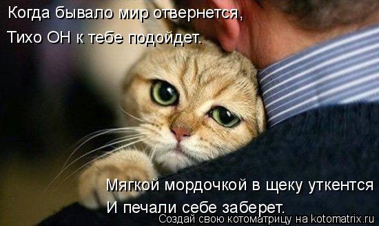 Котоматриця!)))) - Страница 8 979069