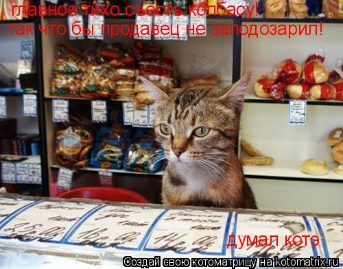 Котоматрица: главное тихо съесть колбасу!  так что бы продавец не заподозарил! думал котэ