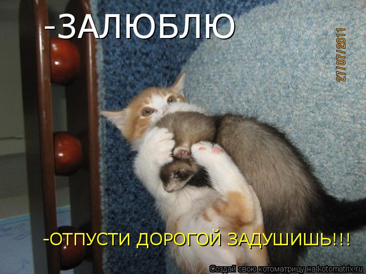 Котоматрица: -ЗАЛЮБЛЮ -ОТПУСТИ ДОРОГОЙ ЗАДУШИШЬ!!!