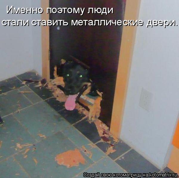 Котоматрица: Именно поэтому люди  стали ставить металлические двери.