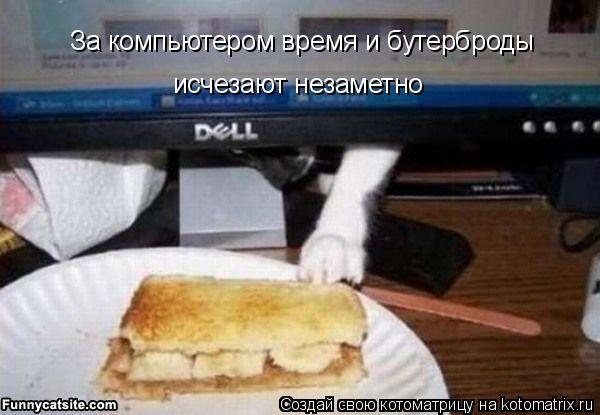 Котоматрица - За компьютером время и бутерброды  исчезают незаметно
