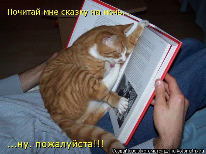 Котоматрица: Почитай мне сказку на ночь... ...ну. пожалуйста!!!