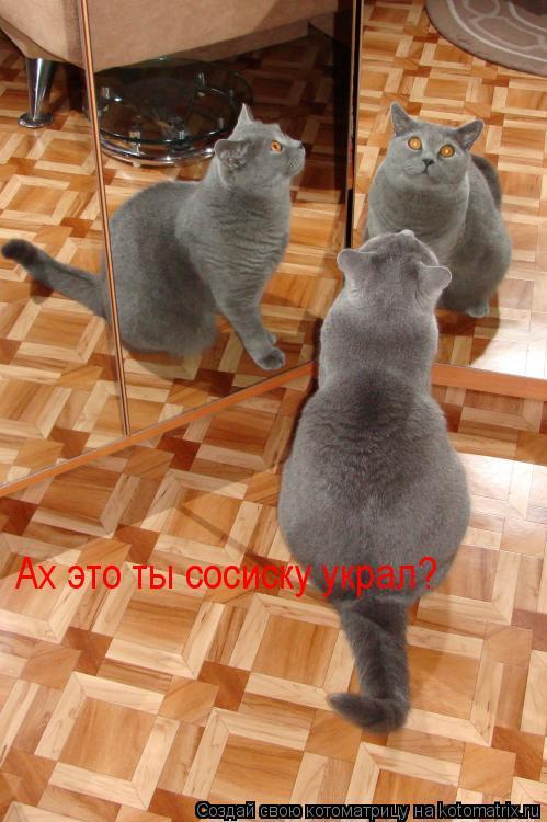 Котоматрица: Ах это ты сосиску украл?