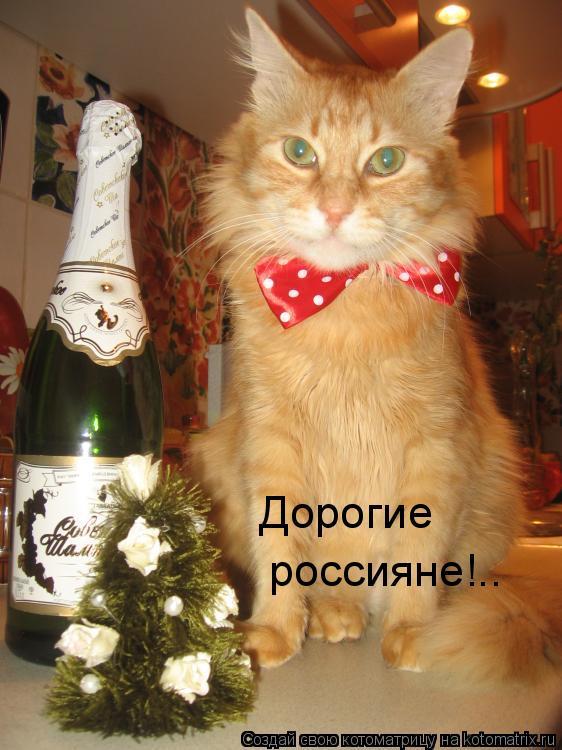Котоматрица: Дорогие  россияне!..