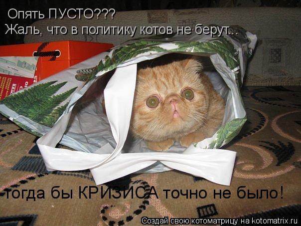Котоматрица: Опять ПУСТО??? Жаль, что в политику котов не берут... тогда бы КРИЗИСА точно не было!