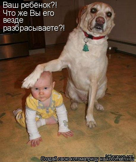 Котоматрица: Ваш ребёнок?! Что же Вы его везде разбрасываете?!