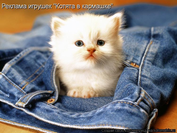 """Котоматрица: Реклама игрушек """"Котята в кармашке"""""""