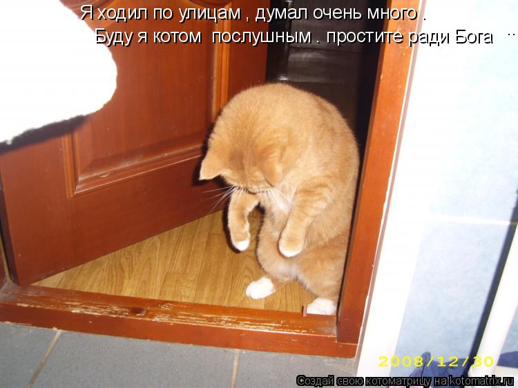 Котоматрица: Я ходил по улицам , думал очень много . Буду я котом  послушным . простите ради Бога ...