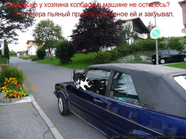 Котоматрица: Интересно у хозяина колбасы в машине не осталось? А то вчера пьяный приехал,наверное ей и закуывал.