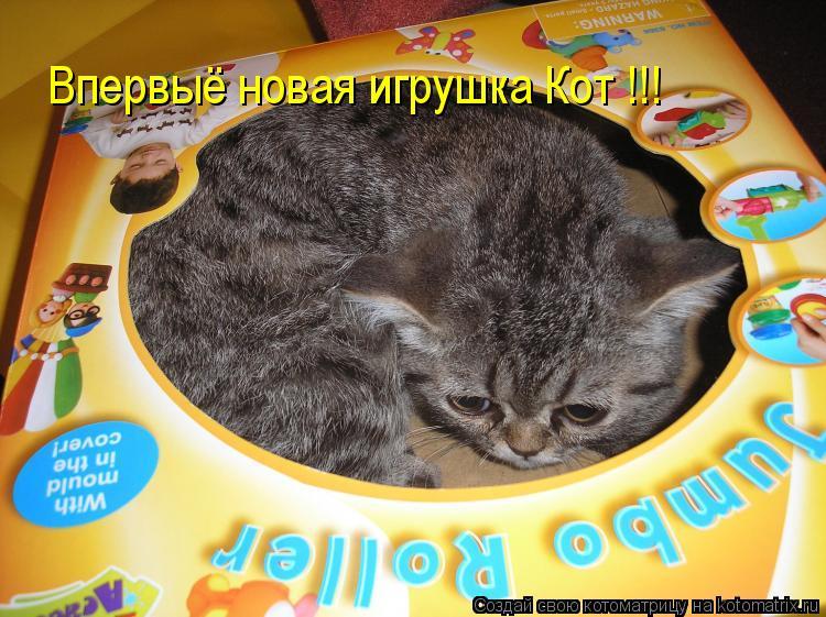 Котоматрица: Впервыё новая игрушка Кот !!!