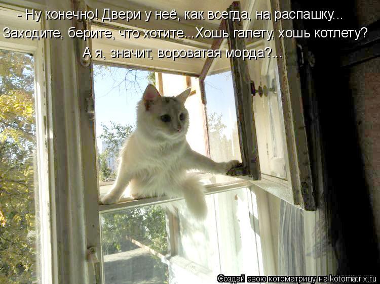 Котоматрица - - Ну конечно! Двери у неё, как всегда, на распашку...  Заходите, берит