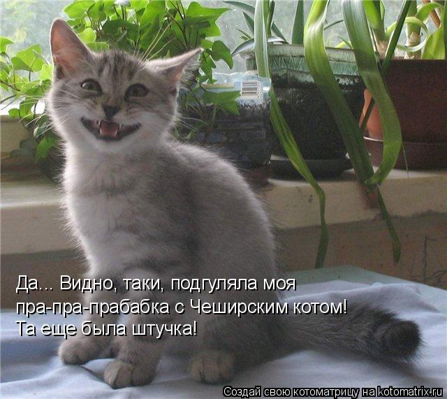 Котоматрица: Да... Видно, таки, подгуляла моя  пра-пра-прабабка с Чеширским котом!  Та еще была штучка!