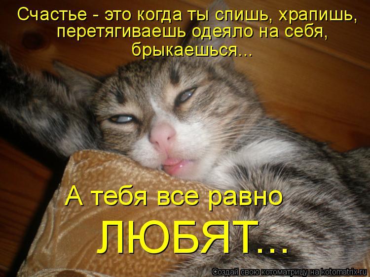 Котоматрица: Счастье - это когда ты спишь, храпишь,  перетягиваешь одеяло на себя,  брыкаешься... А тебя все равно ЛЮБЯТ...