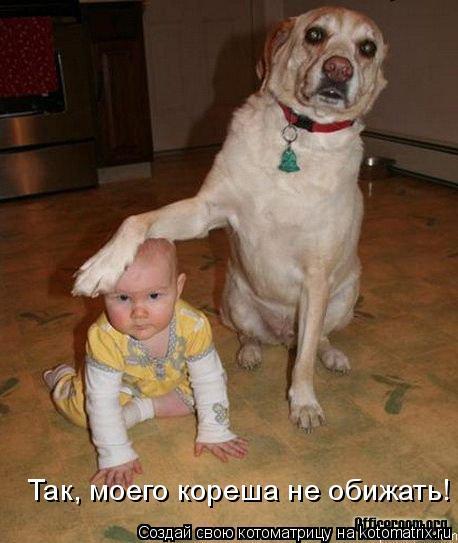 Котоматрица: Так, моего кореша не обижать!