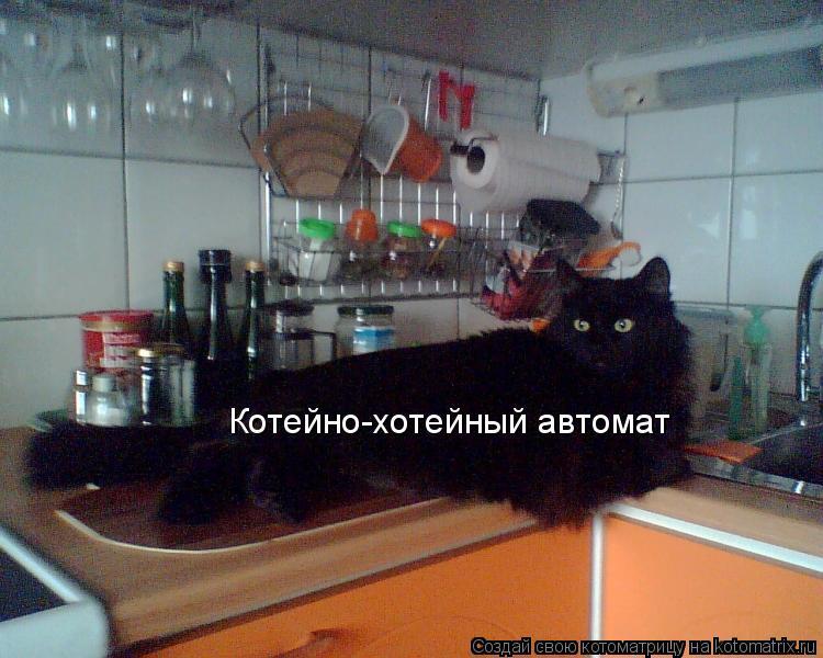 Котоматрица: Котейно-хотейный автомат