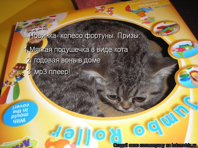 Котоматрица: Новинка- колесо фортуны. Призы: 1.Мягкая подушечка в виде кота 2. годовая вонь в доме 3. мр3 плеер!