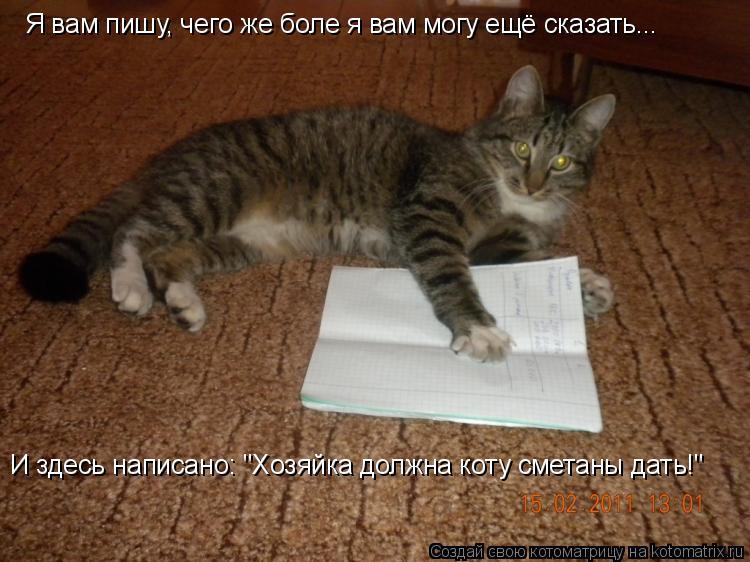 """Котоматрица: Я вам пишу, чего же боле я вам могу ещё сказать... И здесь написано: """"Хозяйка должна коту сметаны дать!"""""""