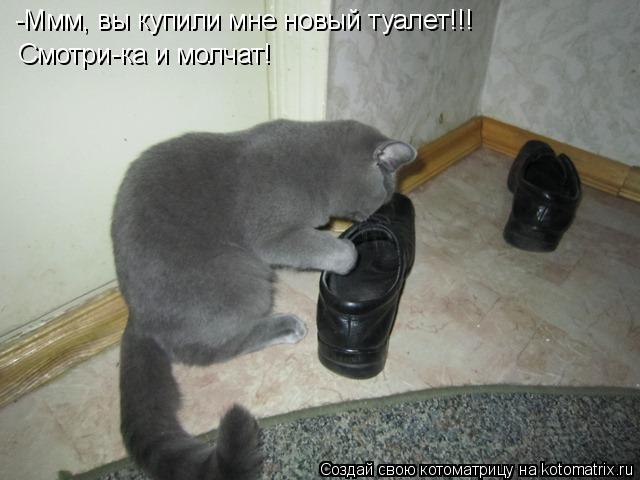 Котоматрица: -Ммм, вы купили мне новый туалет!!! Смотри-ка и молчат!