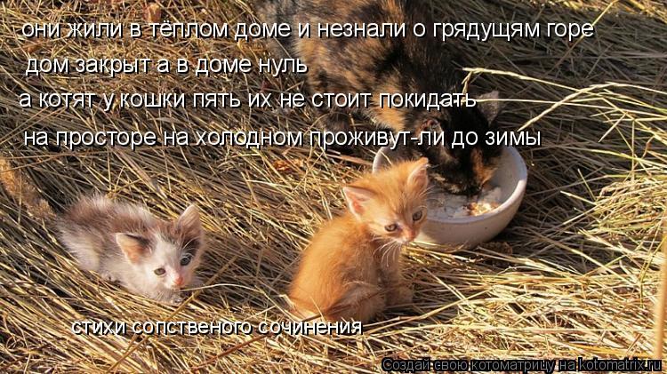 Котоматрица: они жили в тёплом доме и незнали о грядущям горе дом закрыт а в доме нуль  а котят у кошки пять их не стоит покидать на просторе на холодном п