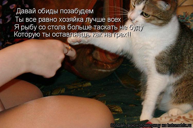 Котоматрица: Давай обиды позабудем Ты все равно хозяйка лучше всех Я рыбу со стола больше таскать не буду Которую ты оставляешь как на грех!!