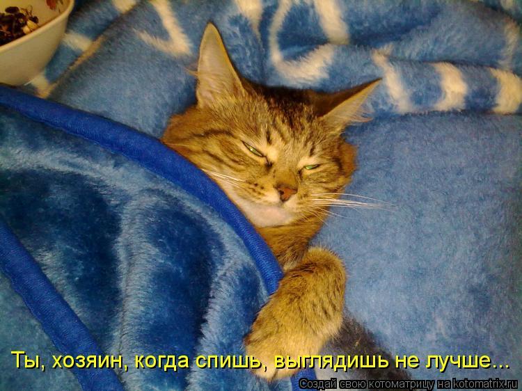 Котоматрица: Ты, хозяин, когда спишь, выглядишь не лучше...
