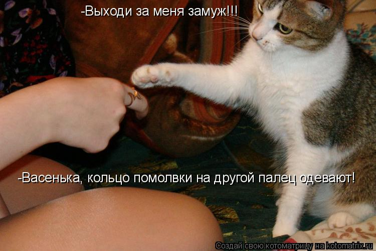 Котоматрица: -Выходи за меня замуж!!! -Васенька, кольцо помолвки на другой палец одевают!