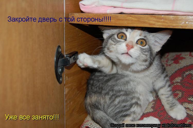 Котоматрица: Закройте дверь с той стороны!!!! Уже все занято!!!