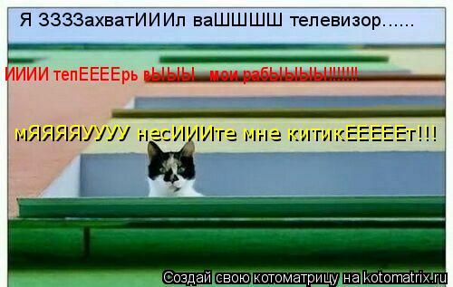 Котоматрица: Я ЗЗЗЗахватИИИл ваШШШШ телевизор...... ИИИИ тепЕЕЕЕрь вЫЫЫ   мои рабЫЫЫЫ!!!!!!! мЯЯЯЯУУУУ несИИИте мне китикЕЕЕЕЕт!!!
