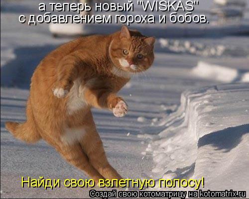 """Котоматрица: а теперь новый """"WISKAS""""  с добавлением гороха и бобов. Найди свою взлетную полосу!"""