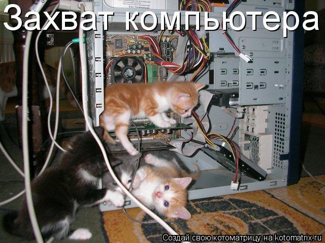 Котоматрица: Захват компьютера