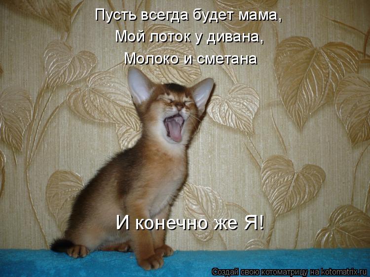 Котоматрица: Пусть всегда будет мама, Мой лоток у дивана, Молоко и сметана И конечно же Я!