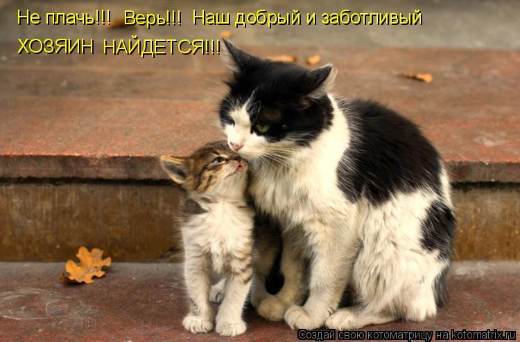 Котоматрица: Не плачь!!! Верь!!! Наш добрый и заботливый ХОЗЯИН НАЙДЕТСЯ!!!