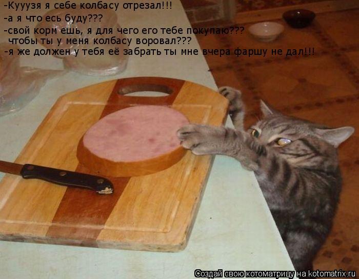 Котоматрица: -Кууузя я себе колбасу отрезал!!! -а я что есь буду??? -свой корм ешь, я для чего его тебе покупаю??? чтобы ты у меня колбасу воровал??? -я же должен