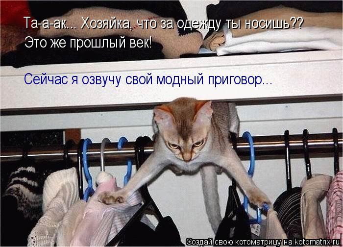 Котоматрица: Та-а-ак... Хозяйка, что за одежду ты носишь?? Это же прошлый век! Сейчас я озвучу свой модный приговор...
