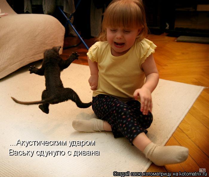 Котоматрица: ...Акустическим ударом Ваську сдунуло с дивана