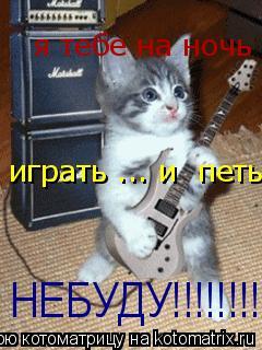 Котоматрица: НЕБУДУ!!!!!!!!!! я тебе на ночь играть ... и  петь