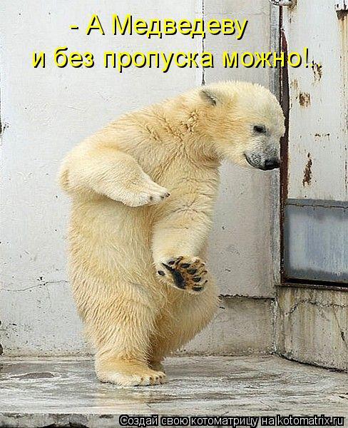 Котоматрица: - А Медведеву  и без пропуска можно!..