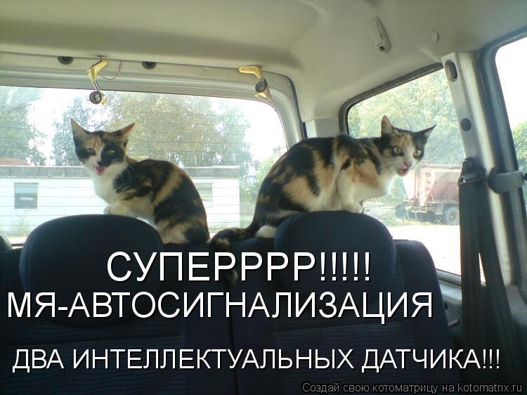 Котоматрица: СУПЕРРРР!!!!! МЯ-АВТОСИГНАЛИЗАЦИЯ ДВА ИНТЕЛЛЕКТУАЛЬНЫХ ДАТЧИКА!!!