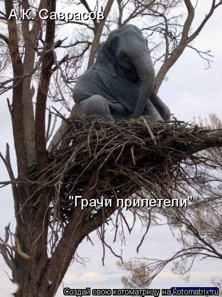 """Котоматрица: А.К. Саврасов """"Грачи прилетели"""""""