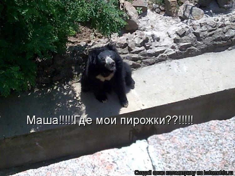 Котоматрица: Маша!!!!!Где мои пирожки??!!!!!