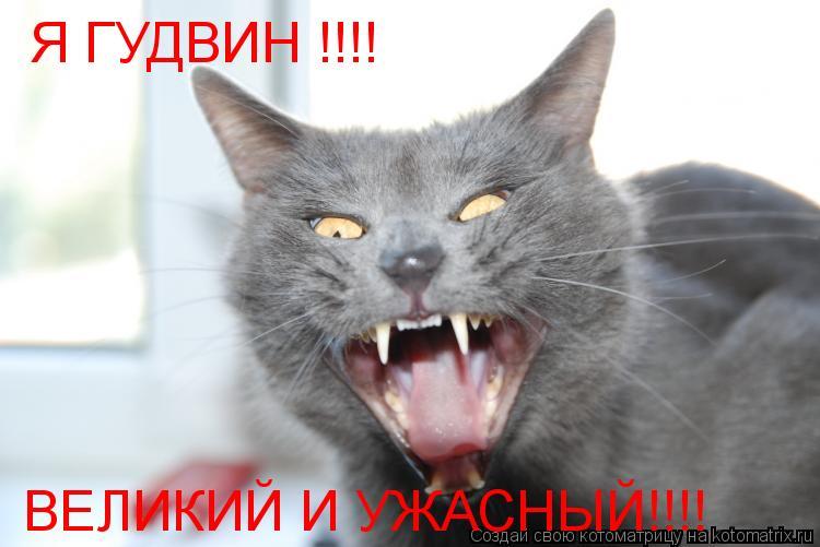 Котоматрица: Я ГУДВИН !!!! ВЕЛИКИЙ И УЖАСНЫЙ!!!!