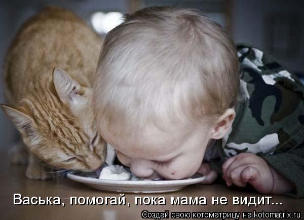 Котоматрица: Васька, помогай, пока мама не видит...