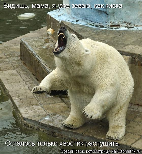 Украина мамки сперма в киске 28 фотография