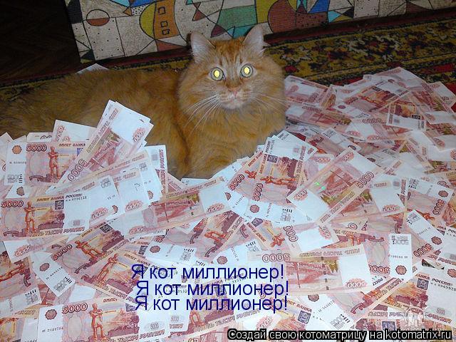 Котоматрица: Я кот миллионер! Я кот миллионер! Я кот миллионер!