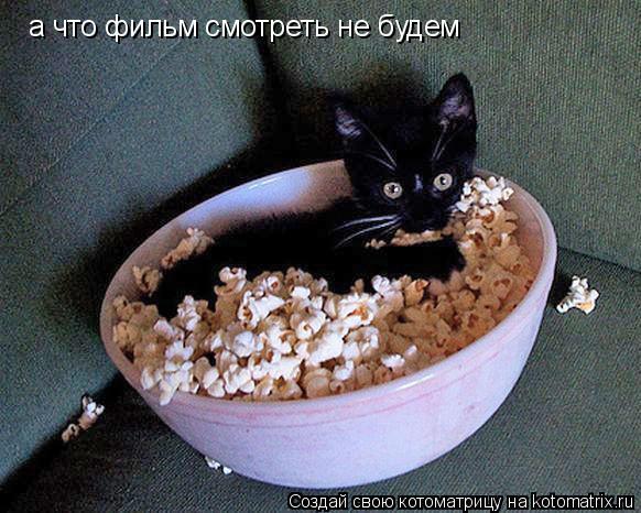Котоматрица: а что фильм смотреть не будем