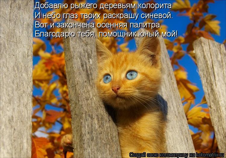 Котоматрица: Добавлю рыжего деревьям колорита И небо глаз твоих раскрашу синевой. Вот и закончена осенняя палитра, Благодарю тебя, помощник юный мой!