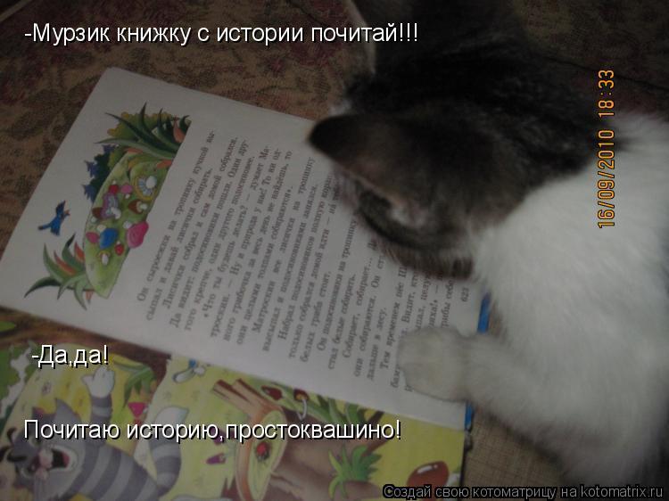 Котоматрица: -Мурзик книжку с истории почитай!!! -Да,да! Почитаю историю,простоквашино!