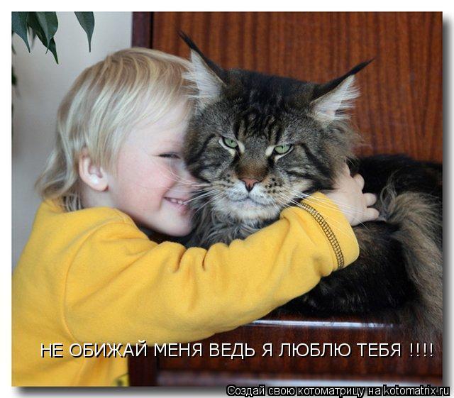Котоматрица: НЕ ОБИЖАЙ МЕНЯ ВЕДЬ Я ЛЮБЛЮ ТЕБЯ !!!!