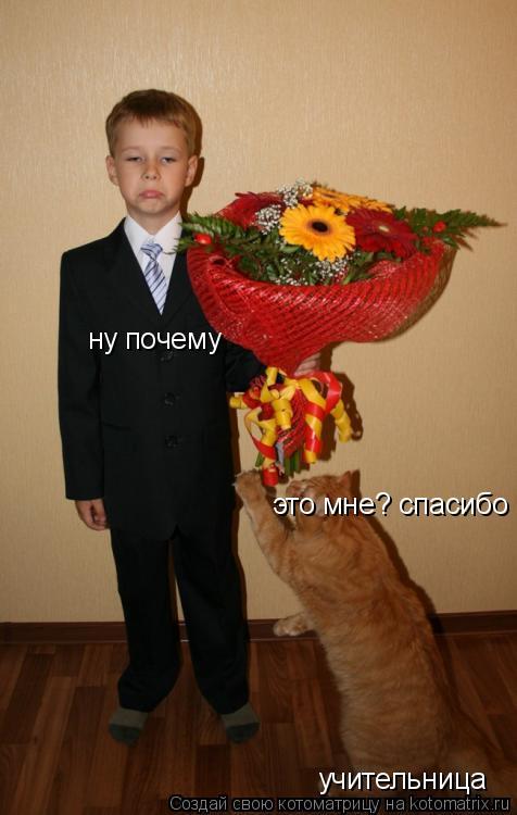 Котоматрица: учительница это мне? спасибо ну почему