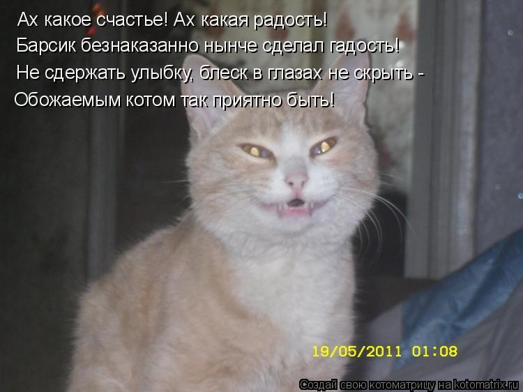 Котоматрица: Ах какое счастье! Ах какая радость! Барсик безнаказанно нынче сделал гадость! Не сдержать улыбку, блеск в глазах не скрыть -  Обожаемым котом